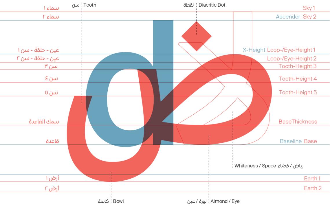 Arabic-type-anatomy-5