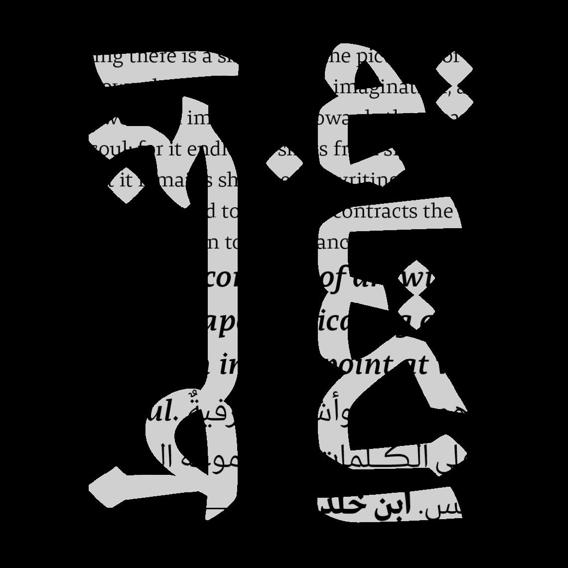 29LT-Zarid-Text-Image-13
